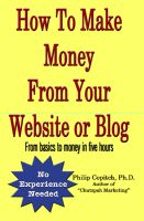 Cover for 'How To Make Money From Your Website or Blog: From basics to money in five hours'