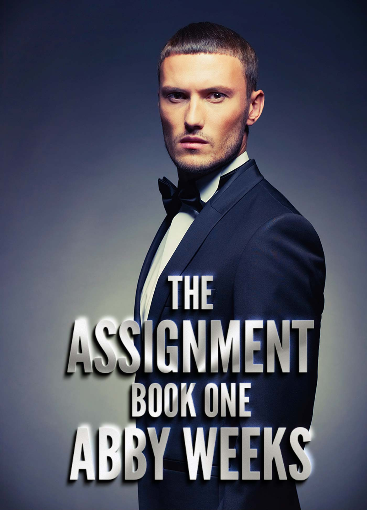 Abby Weeks - The Assignment 1
