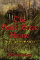 Cover for 'The Solid Brick House'