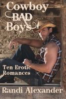 Cover for 'Cowboy Bad Boys'