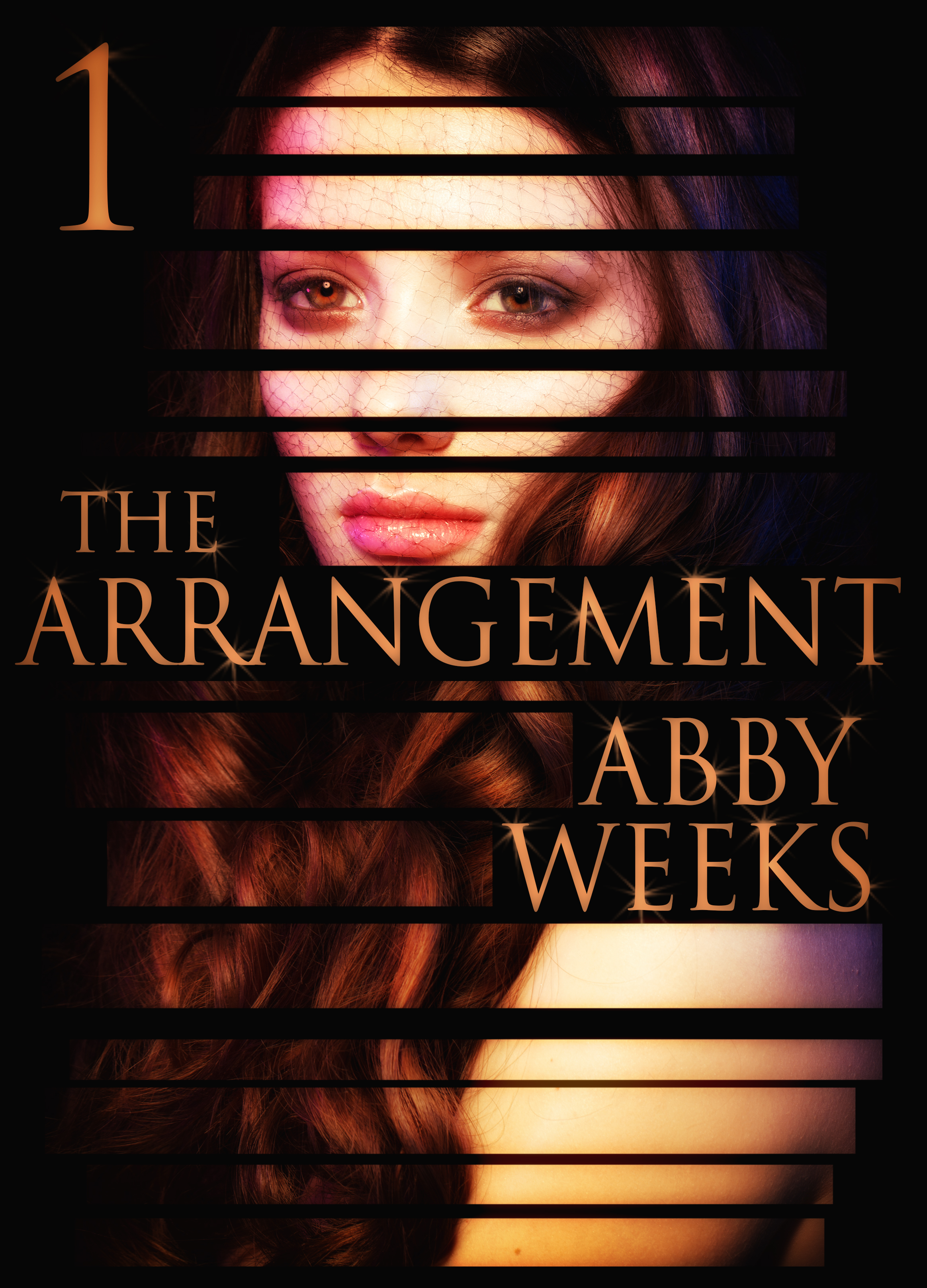 Abby Weeks - The Arrangement 1