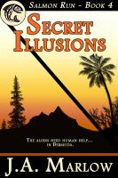 Cover for 'Secret Illusions (Salmon Run - Book 4)'