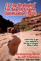 Cover for '12 Strategies for Search Engine Optimization'