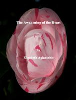 Cover for 'The Awakening of the Heart'