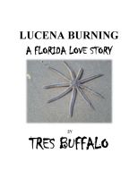 Cover for 'Lucena Burning'
