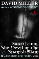 Cover for 'Saito Izumi, She-Devil of the Spanish Main'