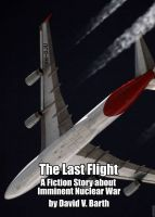 Cover for 'The Last Flight'