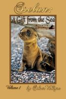 Cover for 'Sselan: A Gift from the Sea'