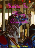 Cover for 'Unlike So Many Carousels'