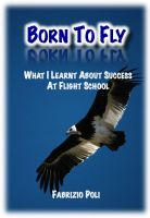 Cover for 'Born to Fly: What I Learnt About Success at Flight School'