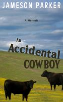 Cover for 'An Accidental Cowboy'
