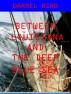 Between Louisiana and the Deep Blue Sea by Darrel Bird