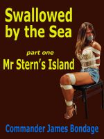 Cover for 'Swallowed by the Sea part one: Mr Stern's Island'