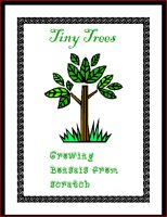 Cover for 'Tiny Trees'