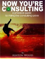 Cover for 'Now You're Consulting - in 2013'