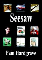 Cover for 'Seesaw'
