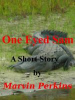 Cover for 'One Eyed Sam'