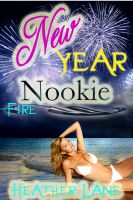 Cover for 'New Year Nookie'