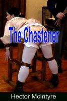 Cover for 'The Chastener'