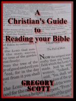 Cover for 'A Christian's Guide To Reading Your Bible'