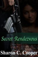 Cover for 'Secret Rendezvous'