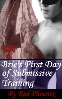 Cover for 'Brie's First Day of Submissive Training (Brie, #1)'