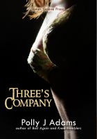 Cover for 'Three's Company - three stories of group sex and multiple partners'