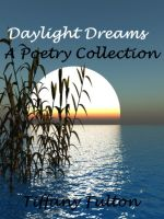 Cover for 'Daylight Dreams'