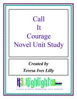 Cover for 'Call It Courage Novel Unit Study'