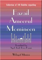 Cover for 'Fazail Ameerul Momineen (asws)'
