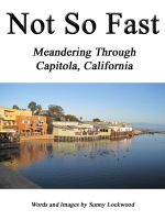 Cover for 'Not So Fast: Meandering Through Capitola, California'