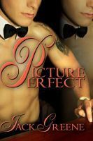 Cover for 'Picture Perfect'