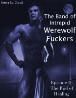 Cover for 'The Band of Intrepid Werewolf Fuckers: Episode II: The Rod of Healing'