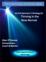 Cover for 'An Entrepreneur's Strategy for Thriving in the New Normal: From Opportunity to Advantage'