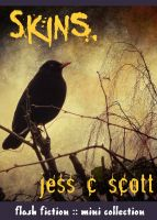 Cover for 'Skins (flash fiction mini collection)'