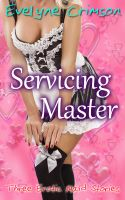 Cover for 'Servicing Master: Three Erotic Maid Stories'