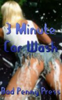 Cover for 'Three Minute Car Wash'