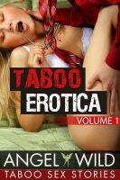 Cover for 'Taboo Erotica (Taboo Sex Stories) (Volume #1)'