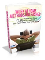 Cover for 'Work From Home Methods Unleashed'