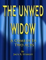 Cover for 'The Unwed Widow'