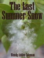 Cover for 'The Last Summer Snow'