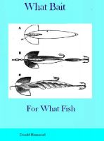 Cover for 'What Bait For What Fish'