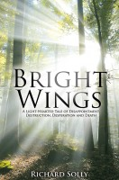Bright Wings: A Light-Hearted Tale of Disappointment, Destruction, Desperation a
