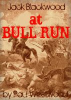 Cover for 'At Bull Run'