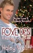 Foxe Den: A Skyler Foxe Holiday Collection by Haley Walsh