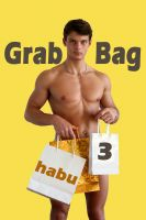 Cover for 'Grab Bag 3 (A Gay Erotica Anthology)'