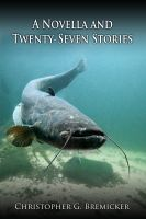 Cover for 'A Novella and Twenty-Seven Stories'