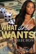 What She Wants Collection by Lanay Jackson