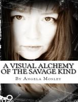 Cover for 'A Visual Alchemy of the Savage Kind'