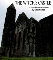 Cover for 'The Witch's Castle'